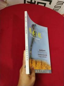 腾飞之龙自然科学进展(中国古生物专辑)