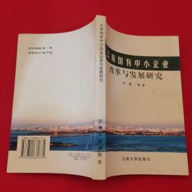 云南国有中小企业改革与发展研究
