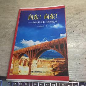 向东!向东! : 向东渠引水工程回忆录