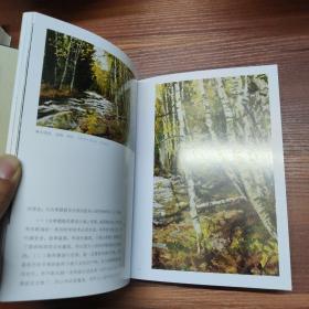 为学日益 : 论绘画语言及油画语言的发展