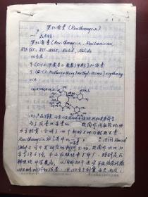 陈岱宗研究员手稿:罗红霉素