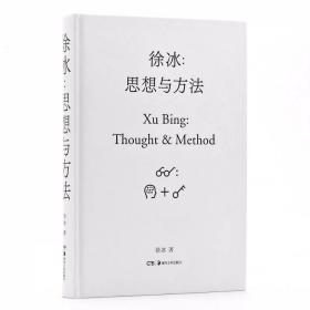 徐冰:思想与方法