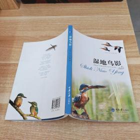 《好奇心书系:湿地鸟影》I3