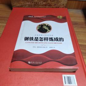 大悦读·语文新课标必读丛书:钢铁是怎样炼成的(学生版)