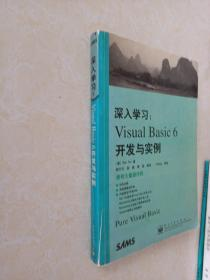 深入学习VISUAL BASIC6开发与实例