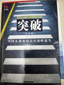 DI2123650 突破--中國企業如何走出戰略迷失(一版一印)