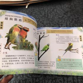 自然生灵:动物(鸟类)(下) /江涛、博源 中国环境出版社