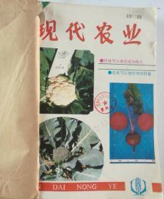 现代农业(月刊)  1993年(1-12)期  合订本  (馆藏)