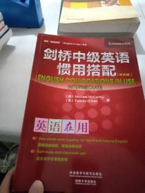 剑桥中级英语惯用搭配(中文版)(剑桥英语在用丛书)