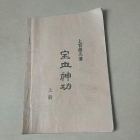 宝血神功 (上册)