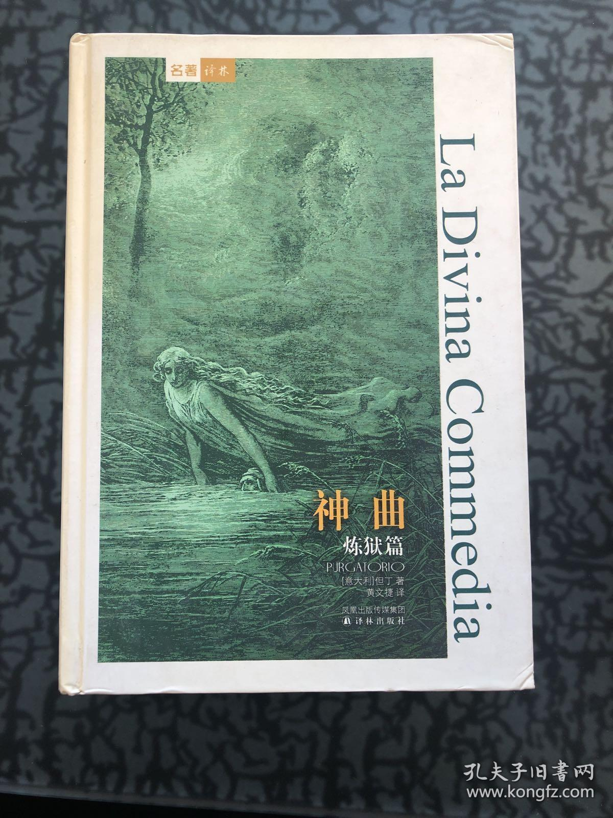 神曲:炼狱篇 /但丁 译林出版社