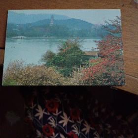 广东惠州邮资明信片15分