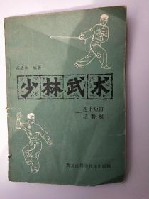 少林武术 连手短打达磨杖