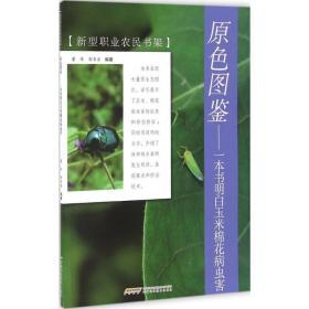 原色图鉴 一本书明白玉米棉花病虫害/新型职业农民书架