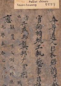 敦煌写经/法藏 P.5557/古文尚书/28×136厘米/原色高清复制