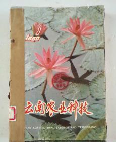 云南农业科技(双月刊)  1990年(1-6)期  合订本  (馆藏)