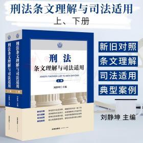 2021新书 刑法条文理解与司法适用上下共二册刘静坤刑法修正案十一11刑法条文刑法司法解释法律适用罪名补充新旧对照法律书籍全套