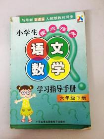 DR133666 小学生重点难点 语文数学学习指导手册 六年级下册(首页有读者签名)