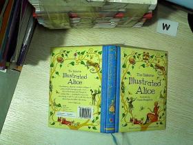 THE USBORNE ILLUSTRATED ALICE 厄斯本插图爱丽丝  .