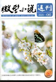 微型小说选刊.2020年第6期总第785期