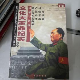 文化大革命纪实上中下三册