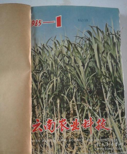 云南农业科技(双月刊)  1985年(1-6)期  合订本  (馆藏)