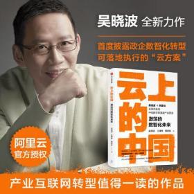 云上的中国:激荡的数智化未来