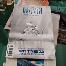 最小说周年专刊2008年12两周年白金纪念专刊小时代2.0虚铜时代主编郭敬明