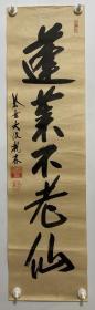 日本回流书画 软片R728包邮