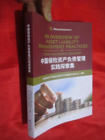 中国保险资产负债管理实践探索集 (保险资金运用培训系列丛书)   小16开