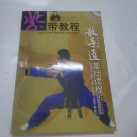 紫带教程:散手道基础教程