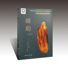 正版 虎魄 珠宝玉石系列科普丛书 国度珠宝玉石质量监督考验中间(NGTC) 地质出版社