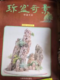 1993年挂历 珍盆奇景13张全