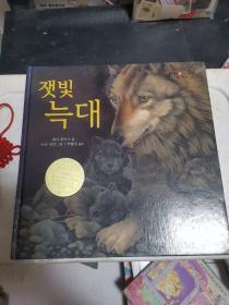 【韩国版】儿童书:灰狼