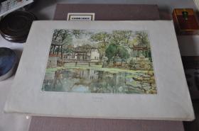 50年代各地方风景写生---苏州拙政园--张眉孙