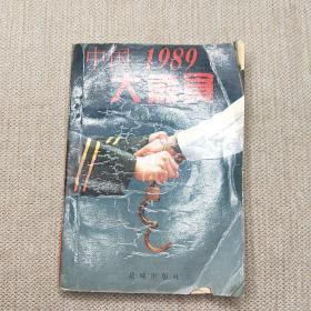中国1989大肃贪