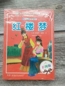 阳光青少年快乐阅读经典 中国古典四大名著(彩图版)