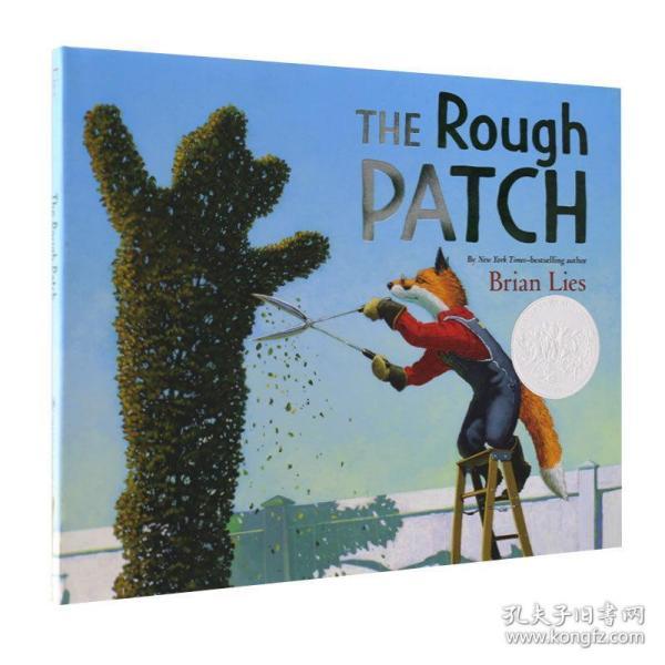 英文原版绘本 The Rough Patch 粗糙的补丁 走过艰难时刻 进口童书故事书 2019凯迪克银奖 Brian Lies插画 精装 Hardcover