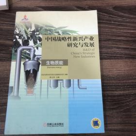 中国战略性新兴产业研究与发展:生物质能