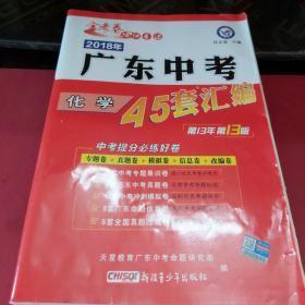 天星教育·2018年广东中考45套汇编 化学