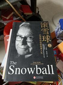 滚雪球(上):巴菲特和他的财富人生