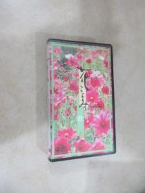 日文书:录像带    秋   盒装  详见图片