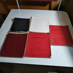 命理学、易学、紫薇斗数 手写笔记(5本合售)