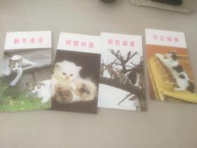猫 二 贺年片 1985年四枚合售
