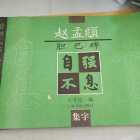 赵孟頫胆巴碑(集字)