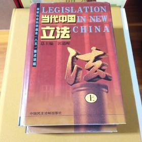 当代中国立法