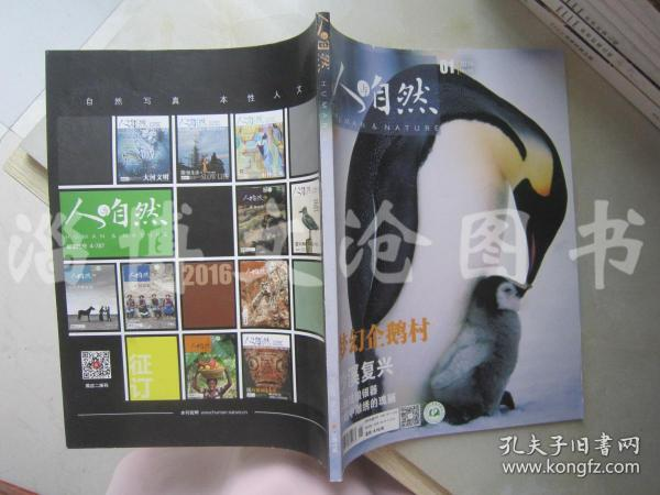 人与自然 2016年第01期【梦幻企鹅村】