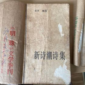 新诗潮诗集(未名湖丛书)(全二册)