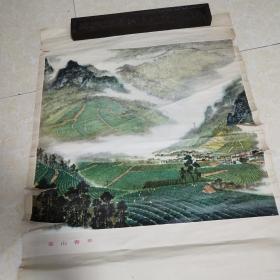 74年宣传画一张:卓鹤君绘《茶山春早》(53X76)CM