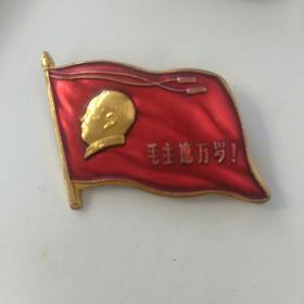 文革毛主席像章,~毛主席来厂视察纪念章~一棉